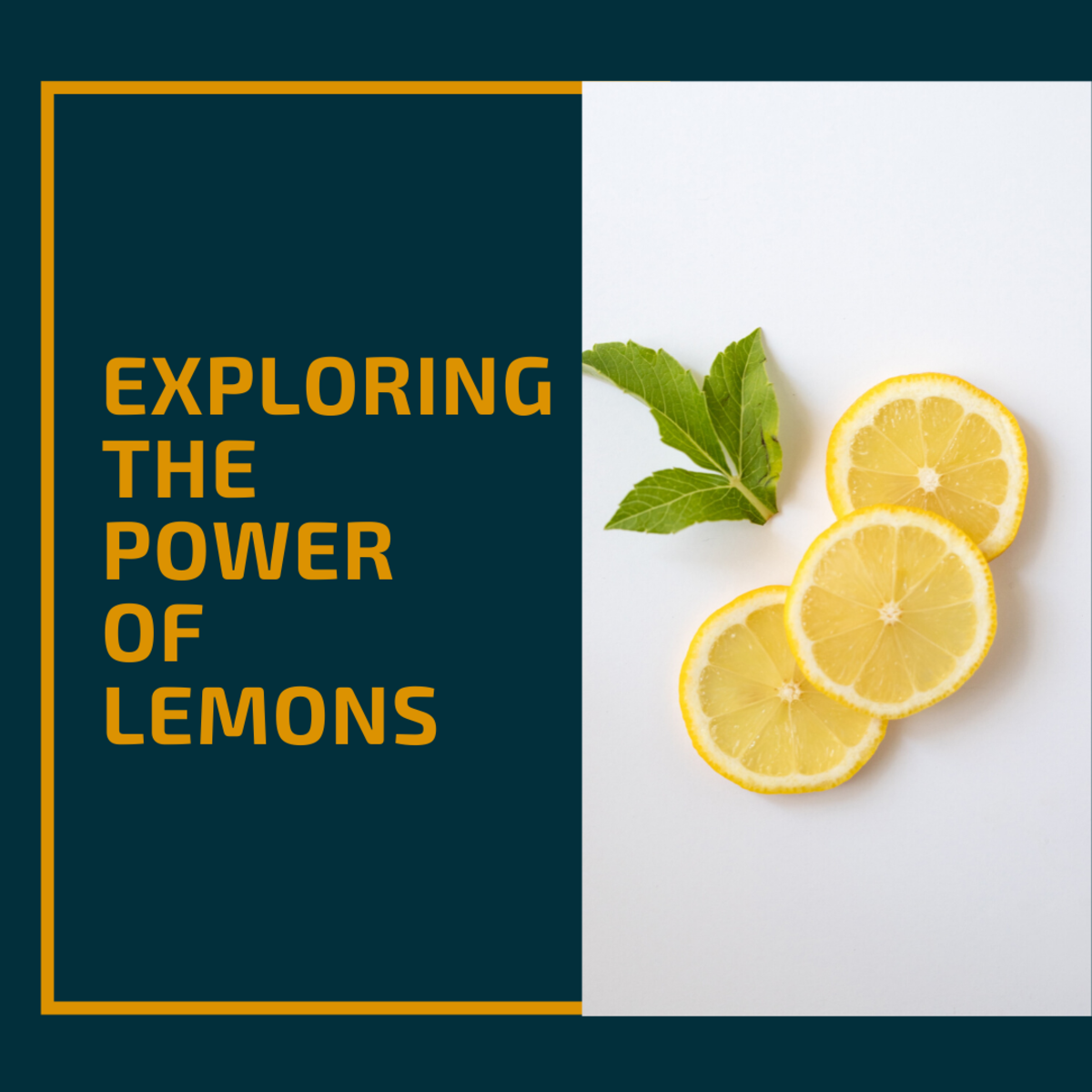 This article explores the amazing things you can make with lemons!