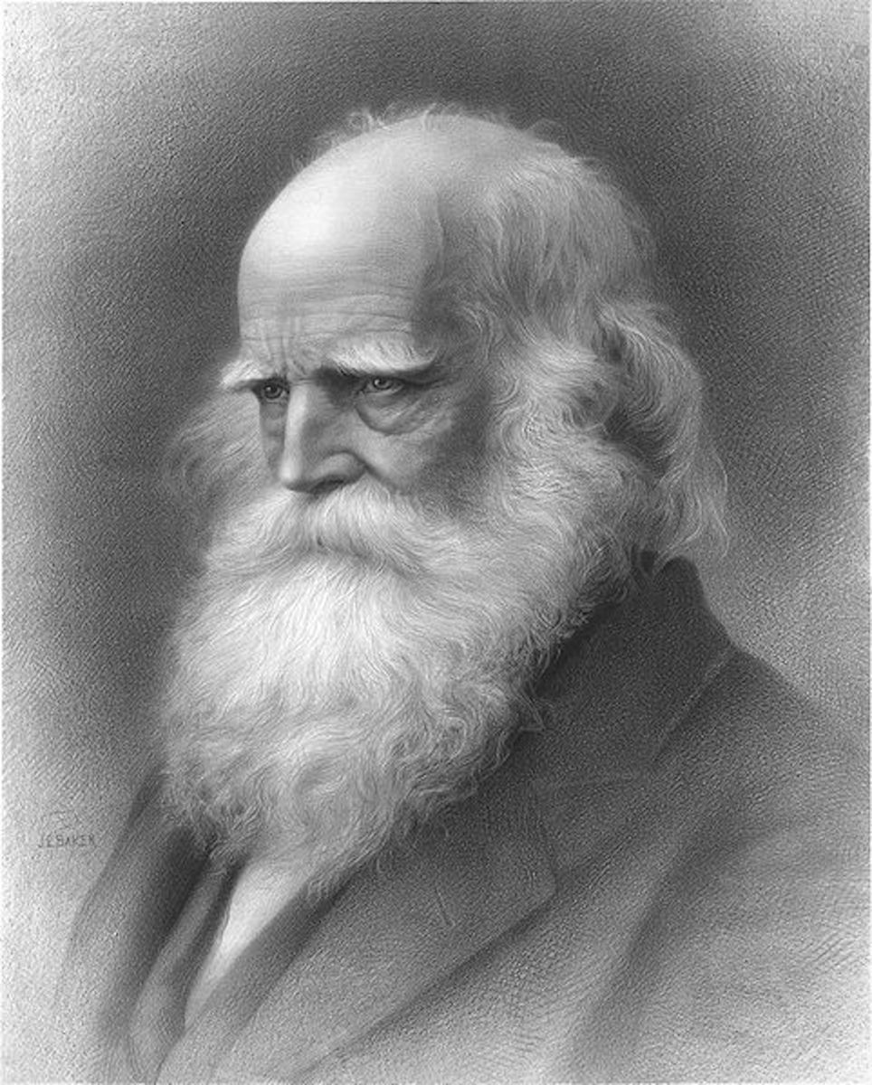 "William Cullen Bryant's ""The Gladness of Nature"""