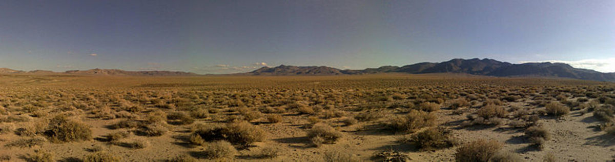 Super Short Story: The Law of the Desert Highway