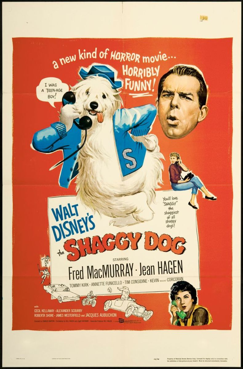 Film Review: The Shaggy Dog (1959)