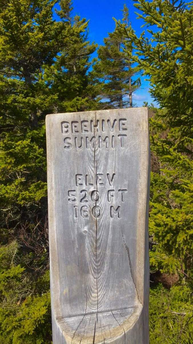 Beehive Summit - Acadia National Park