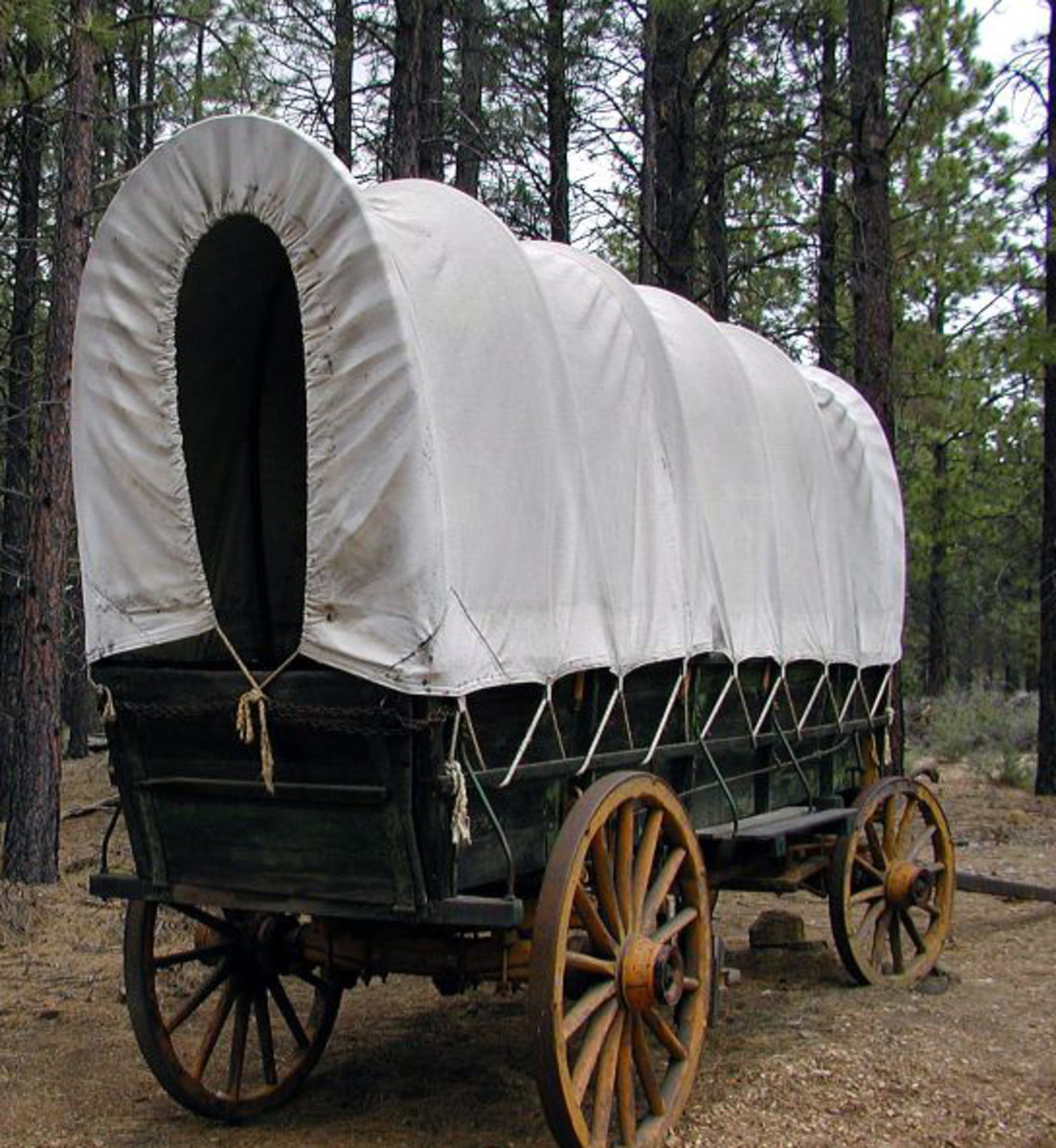A farm wagon with hoops and canvas top