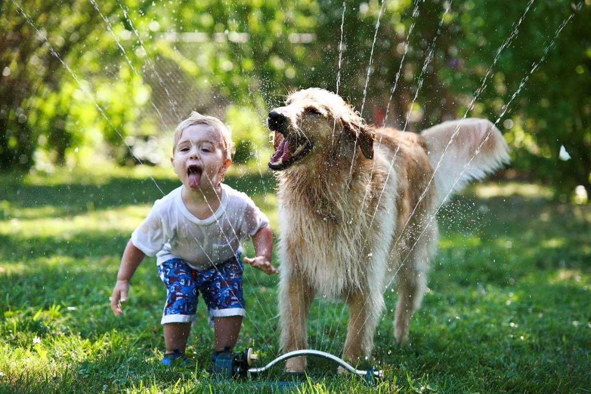 How to Keep Your Child Safe Around Dogs - And Vice Versa