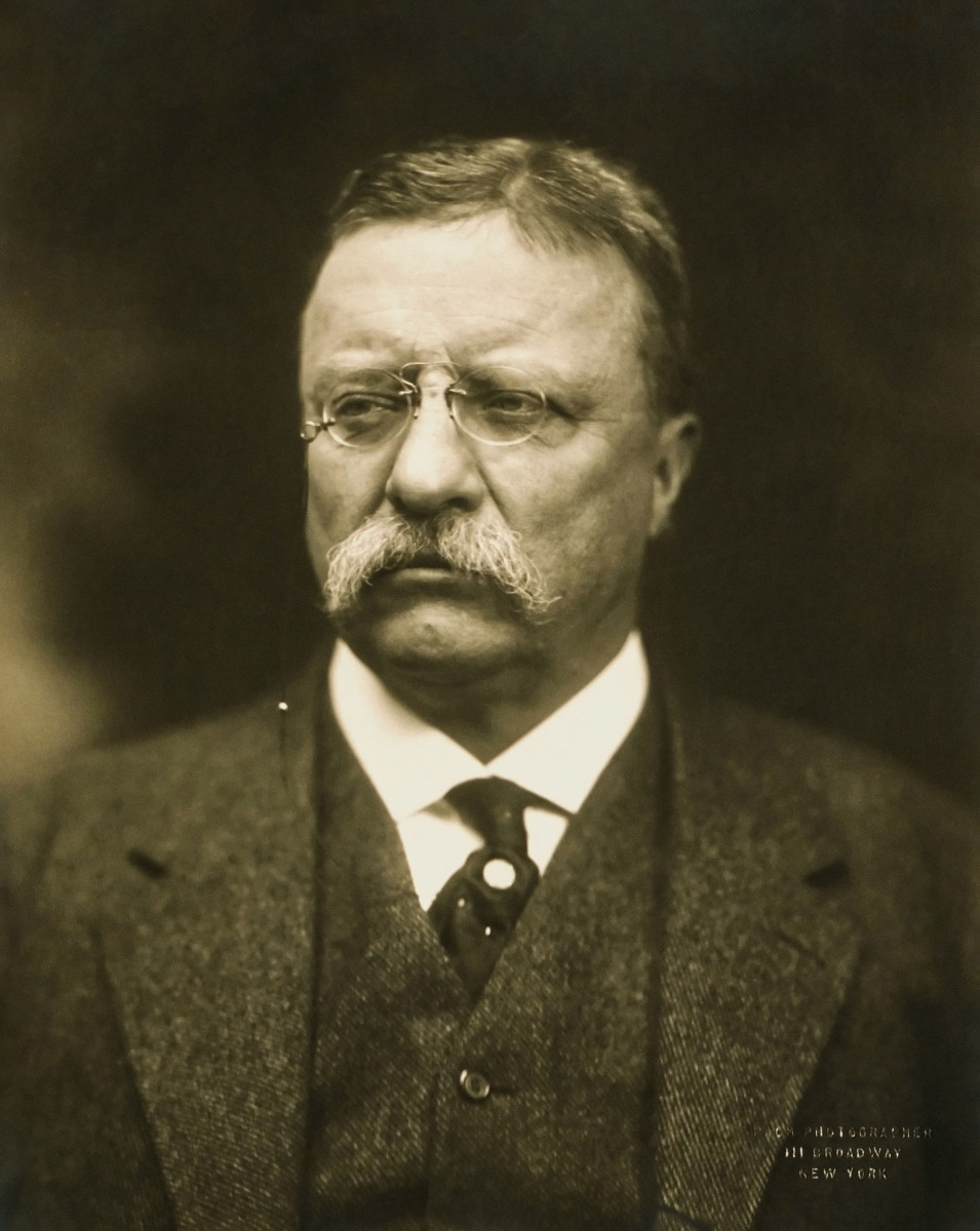 Theodore Roosevelt: 26th President: Great Conservationist
