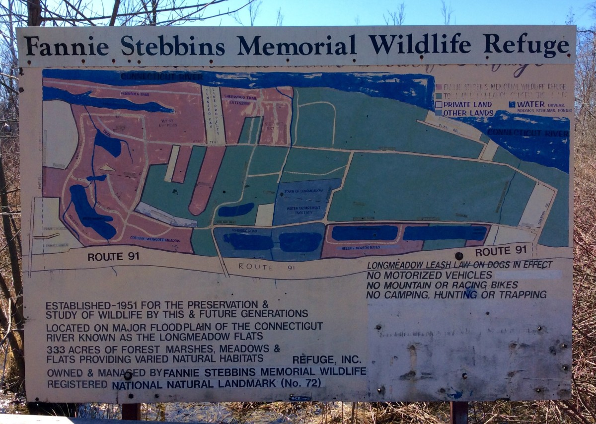 Hiking in the Fannie Stebbins Memorial Wildlife Refuge:  Longmeadow, Massachusetts