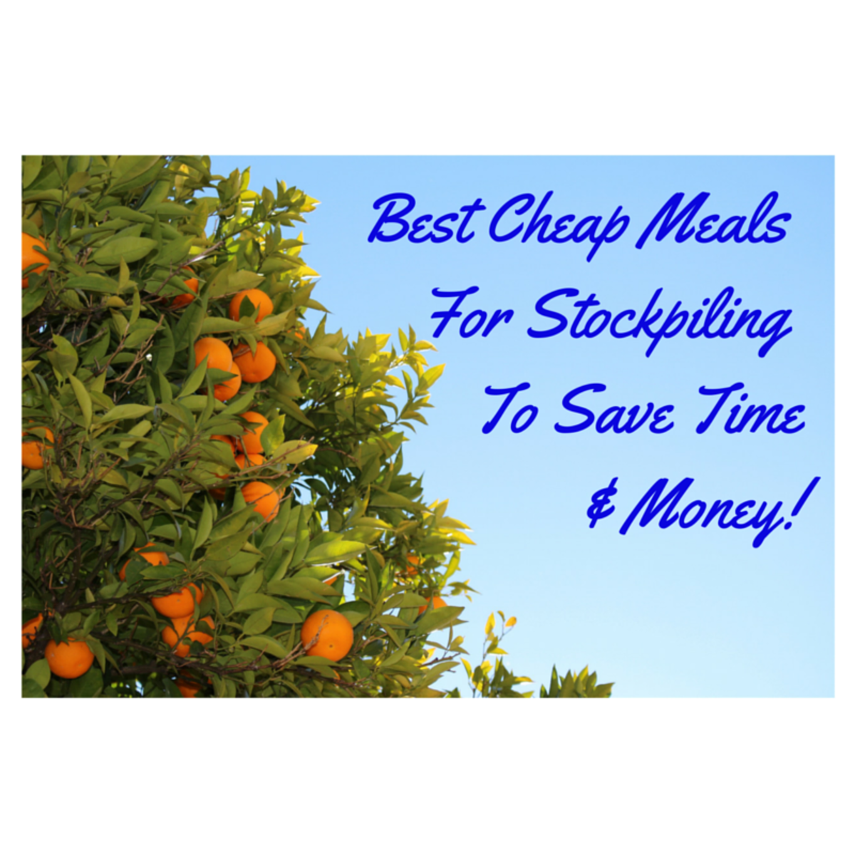 Cheap Meals:  How to Stockpile Them to Save Time and Money