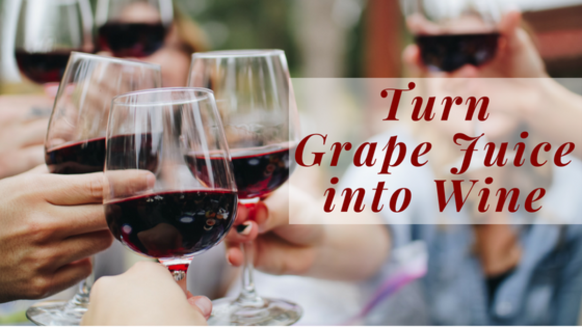 Learn how you can make wine from supermarket juice.