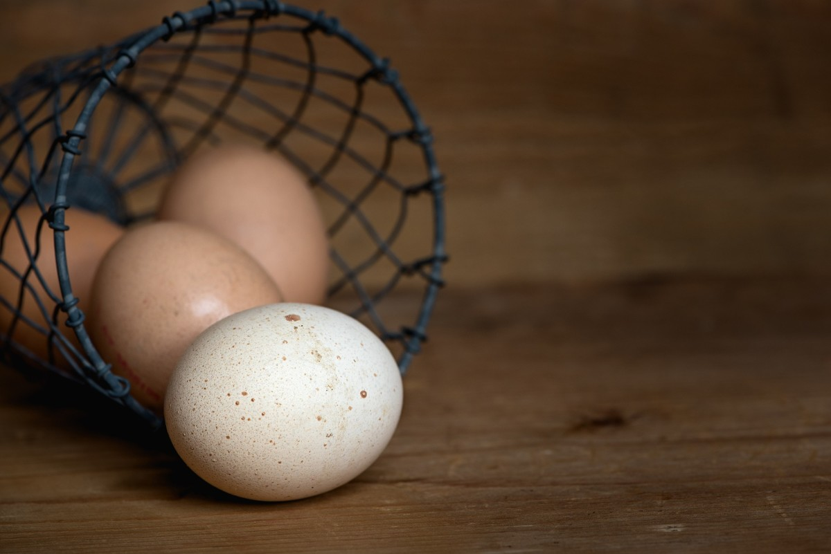 Exploring Eggs: 7 Ways to Cook One of the World's Healthiest Foods
