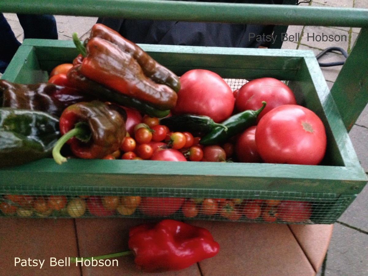 Ways to Preserve Tomatoes and Peppers
