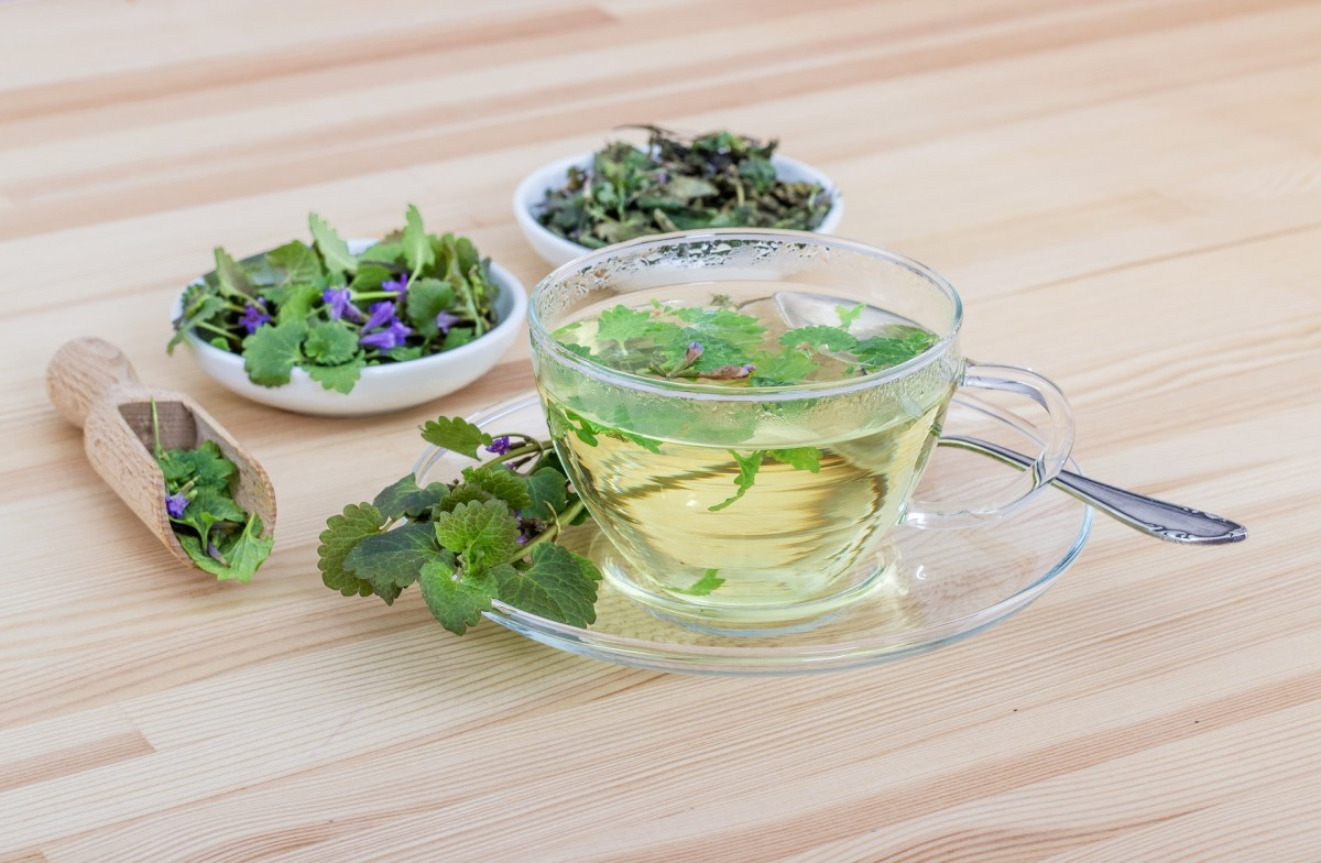 herbs and tea