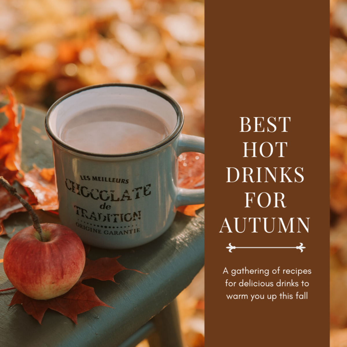 This article compiles a handful of my favorite autumnal drinks for when it starts getting colder outside.
