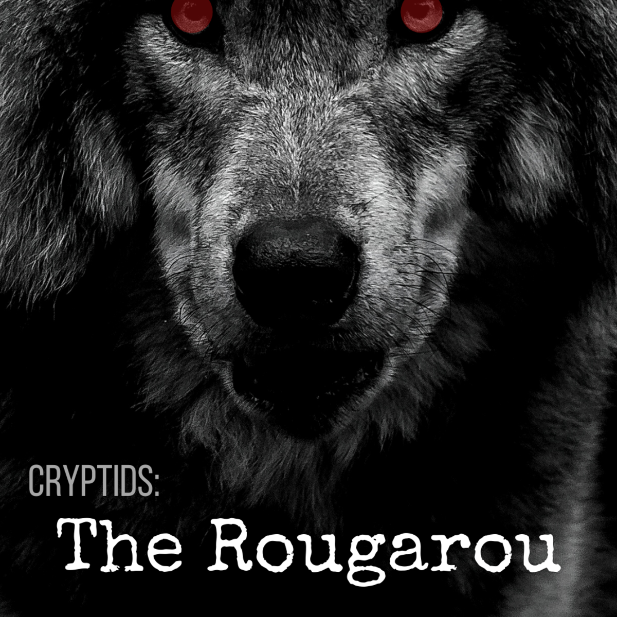 Discover Louisiana's legendary werewolf: the Rougarou.