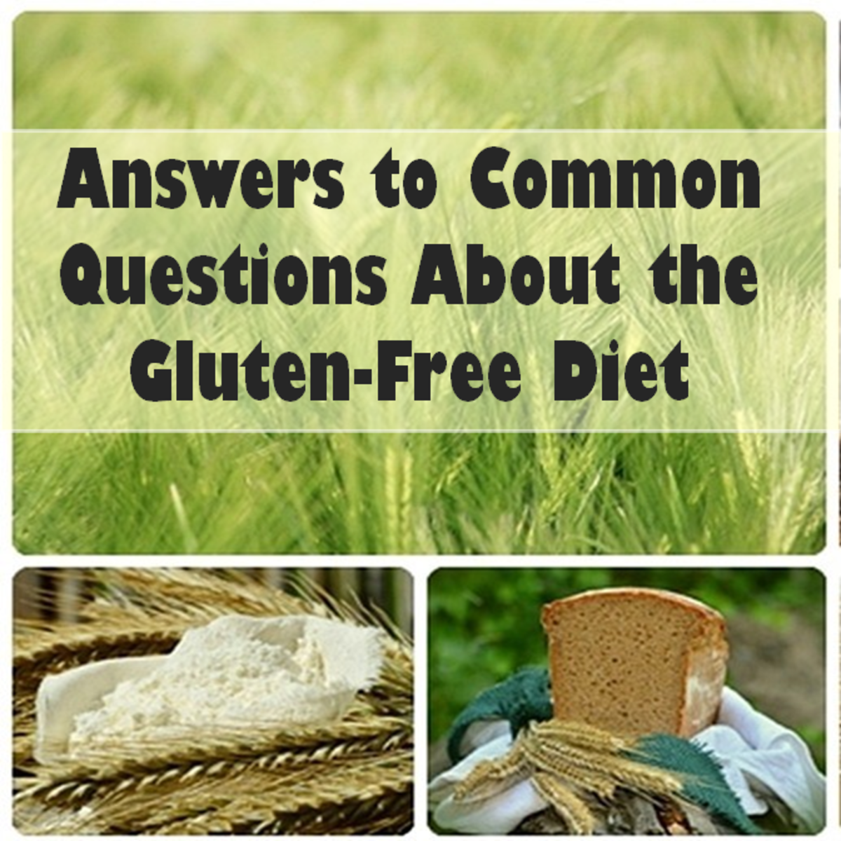 Common Questions Asked About the Gluten-Free Diet