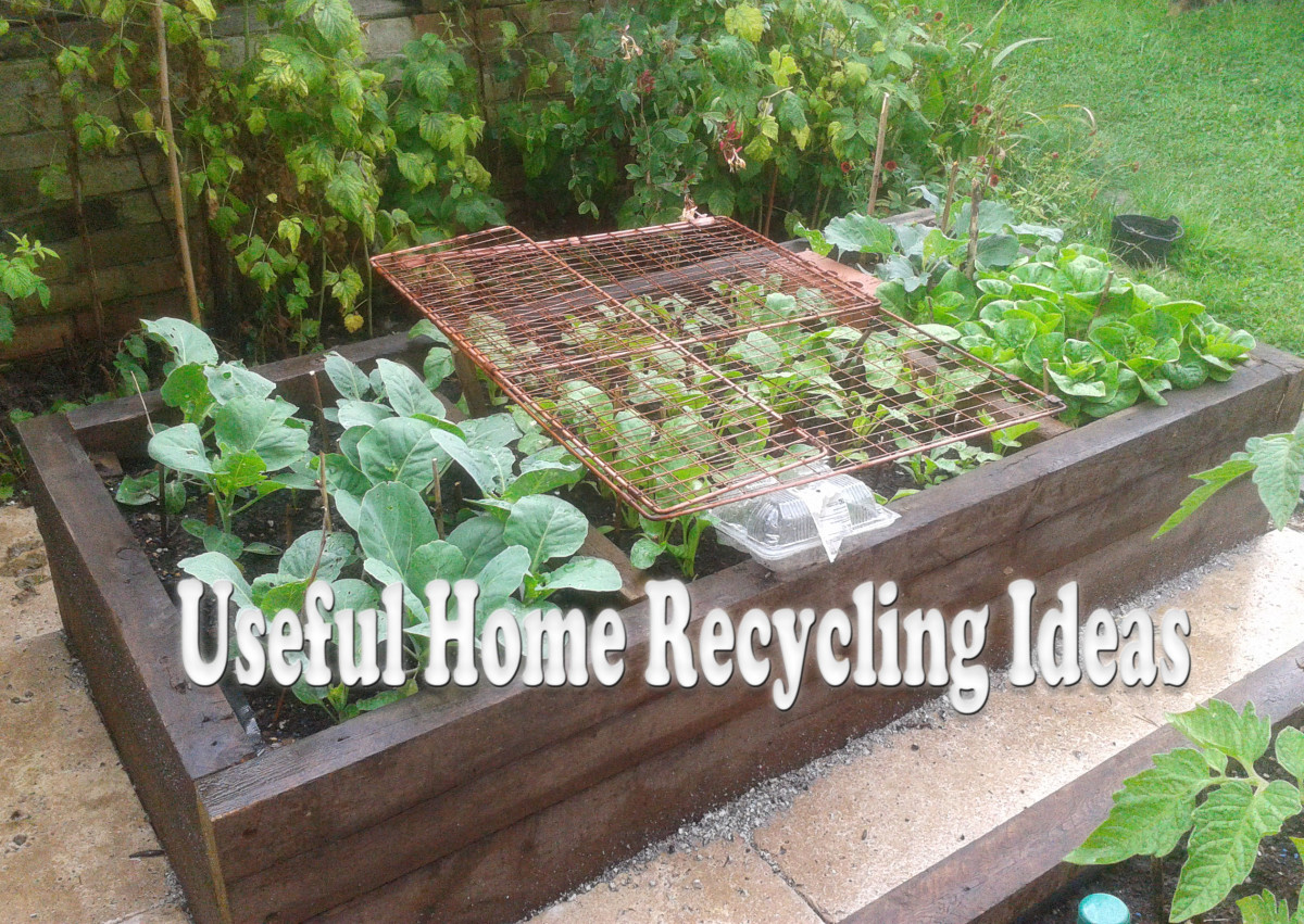 10 Ideas for Recycling Plastic, Tin, and Cardboard Containers for Reuse at Home