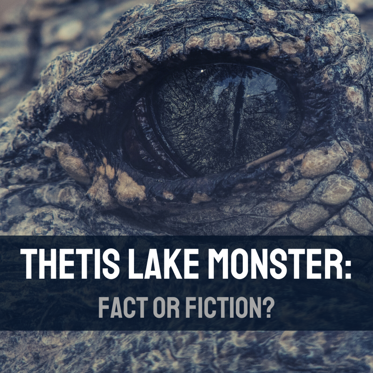Discover the myth of the Thetis Lake Monster, and review some of the sightings of this creature.