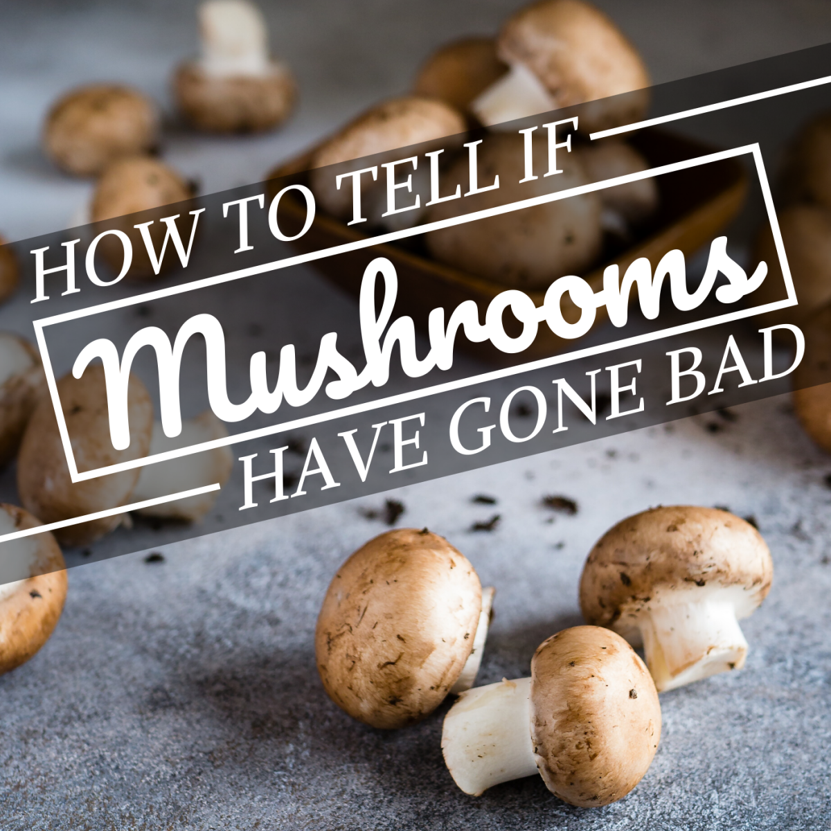 How to Tell When Mushrooms Go Bad