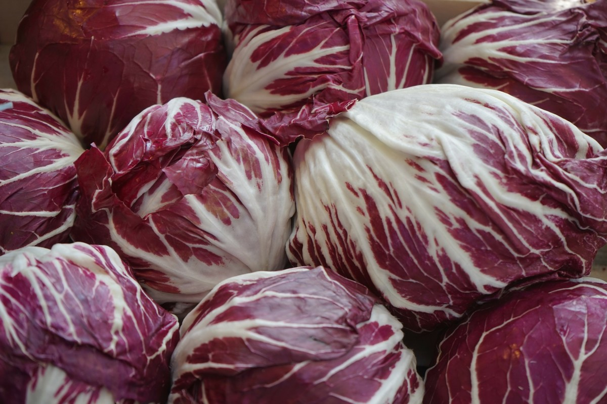 All About Radicchio: It's Not Red Cabbage