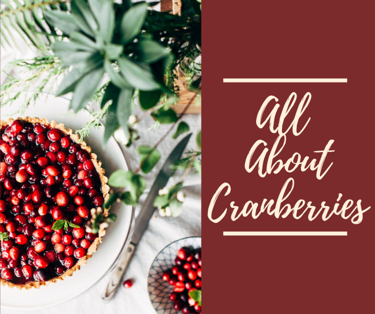 Cranberries are a great treat that goes well with breakfast, lunch, dinner, and dessert.