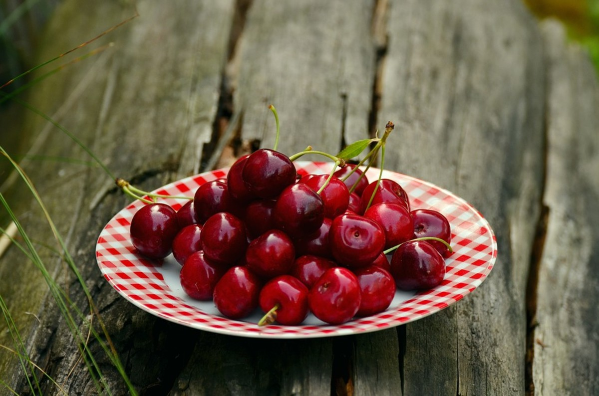 Award Winning Cherry Pie and 3 Other Recipes