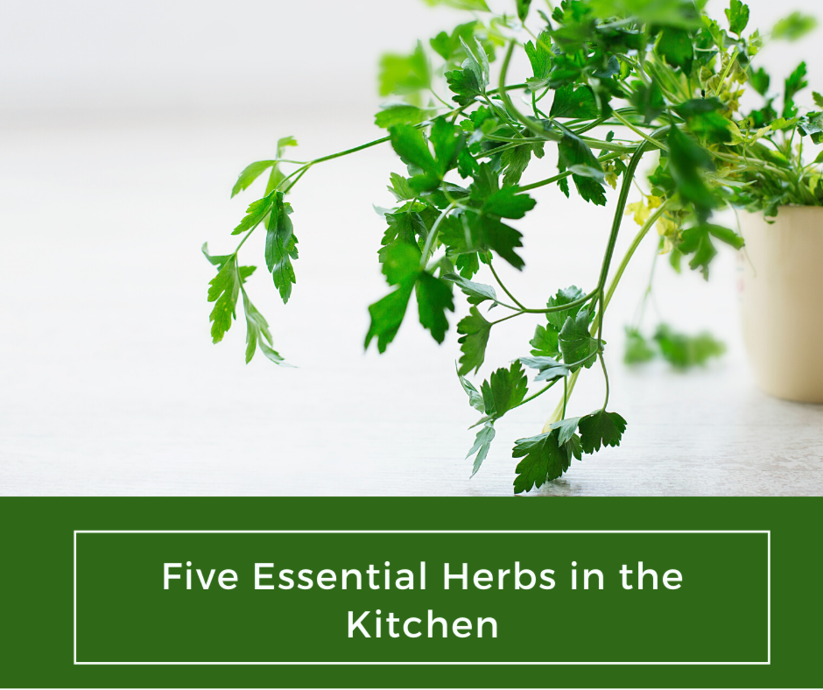 These delicious herbs are great for cooking many recipes.
