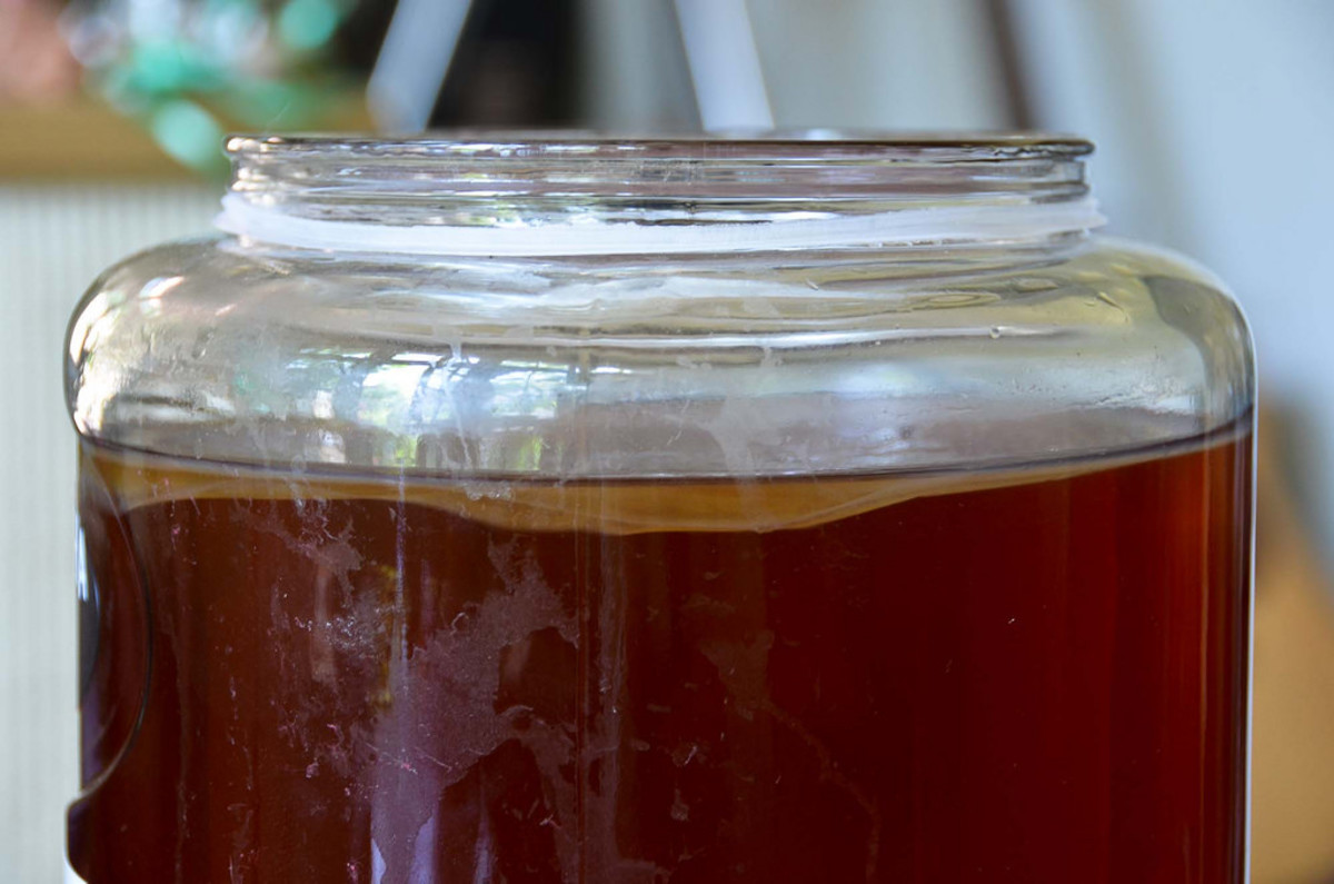 Why You Need to Know About Jun Kombucha