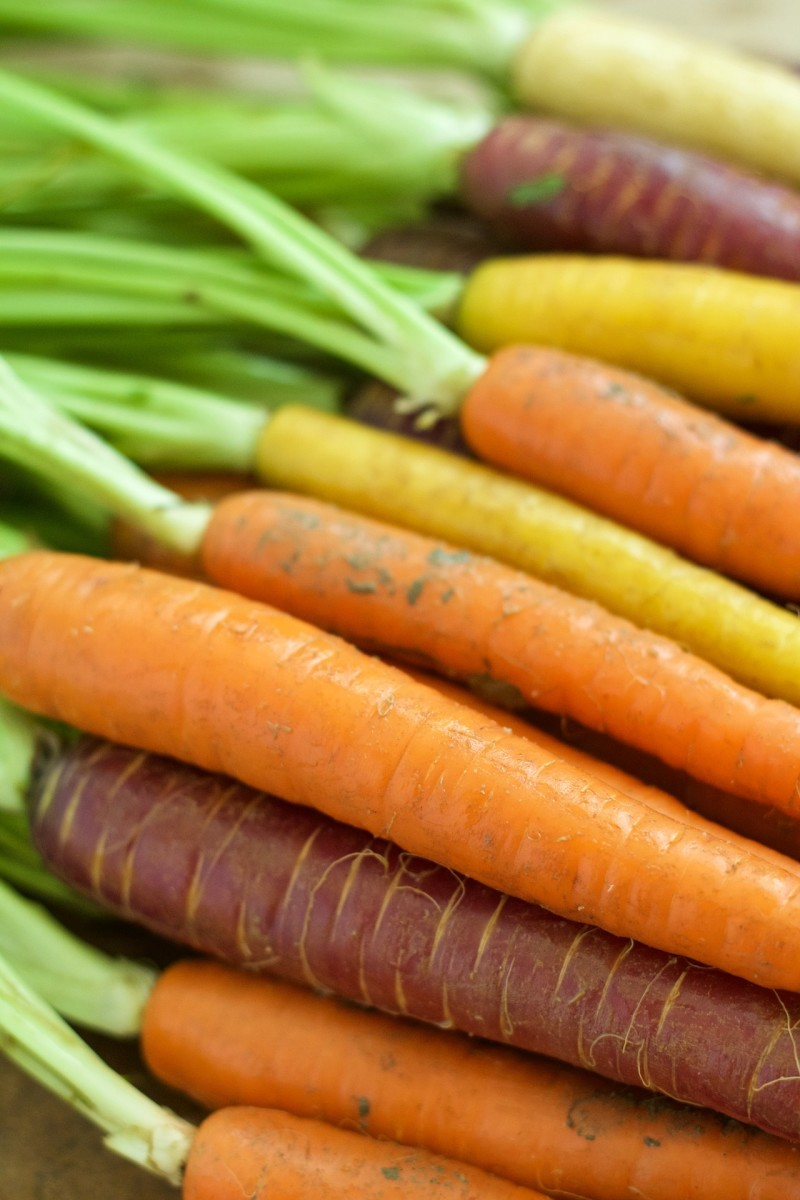 Exploring Carrots: Facts, Folklore, and Fun Recipes
