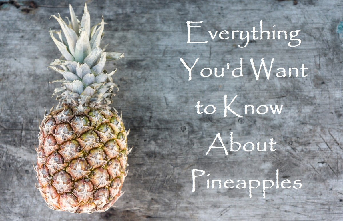 Exploring Pineapple: History and Recipes