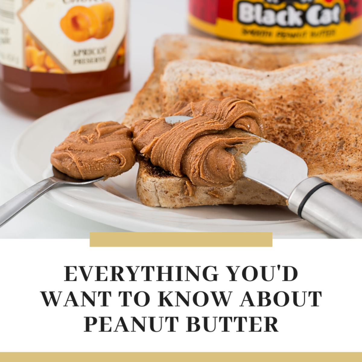 Exploring Peanut Butter: Tales, Trivia, and Tasty Recipes