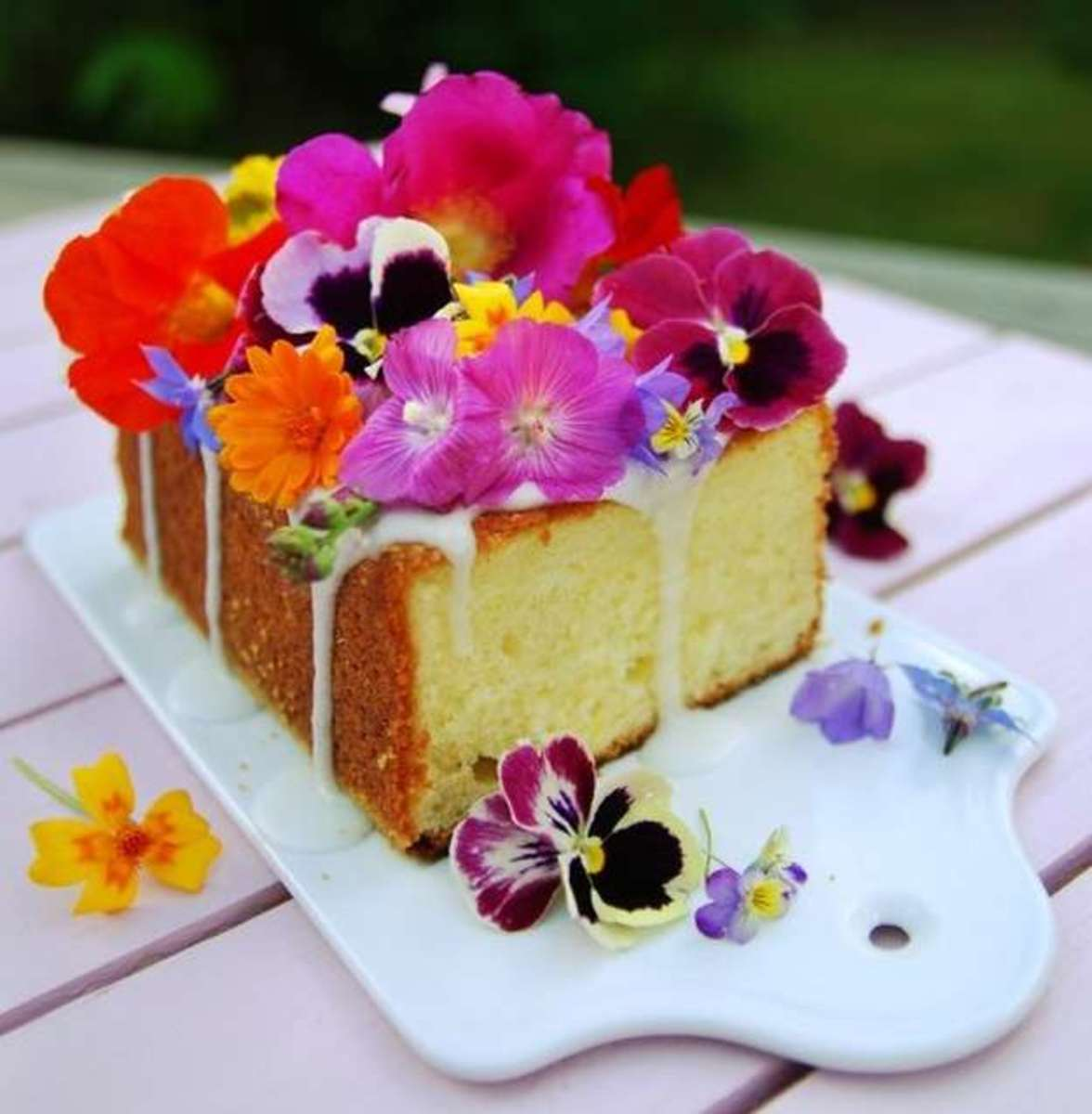 Edible flowers that are almost too pretty to eat delishably although there are many edible flowers i have chosen only a few the ones that i myself have tried below is a list them mightylinksfo