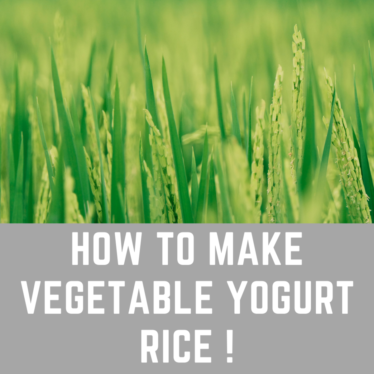 How to Make Vegetable Yogurt Rice (Vegetable Tahari)