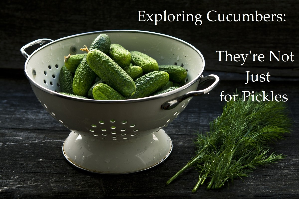 Exploring Cucumbers: More Than Just Pickles