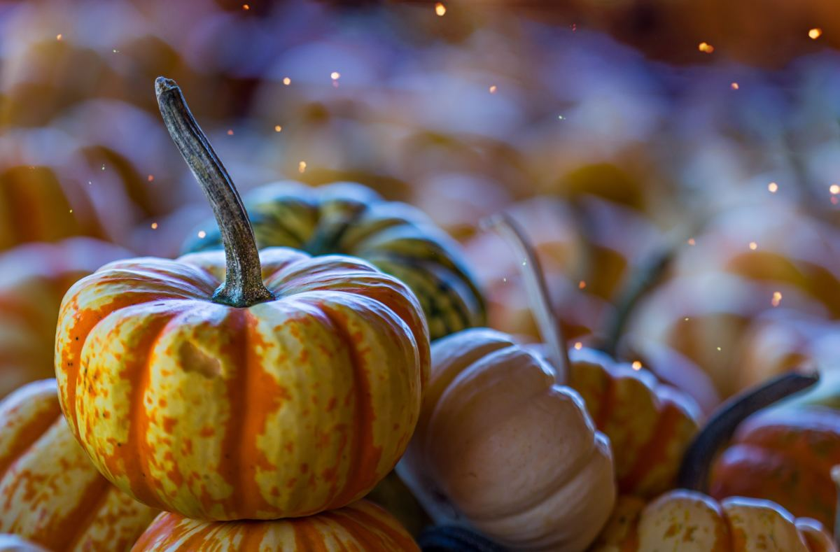 Autumn Recipes From Around the World