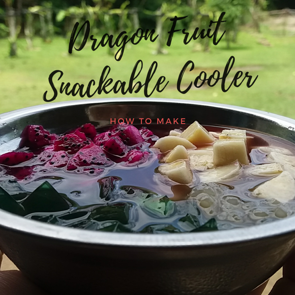 how to make snackable dragon fruit coolers