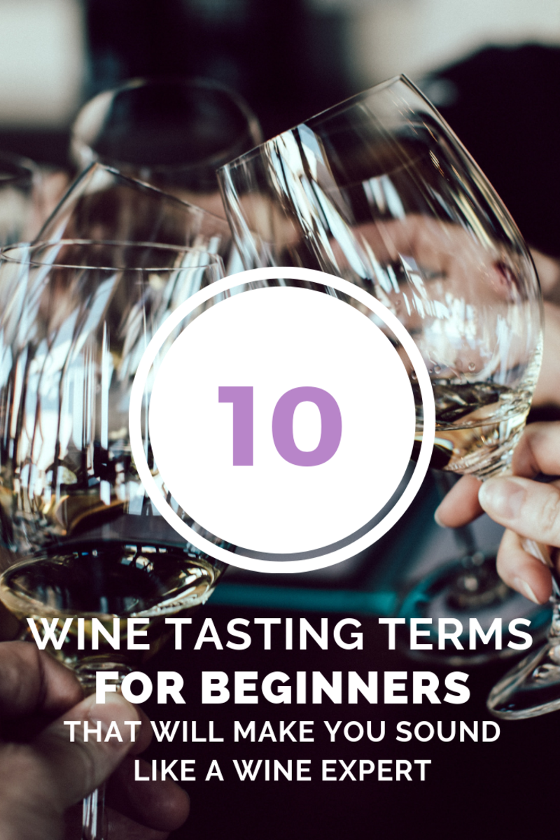 10 Wine Terms for Beginners and How to Taste Wine Like an Expert