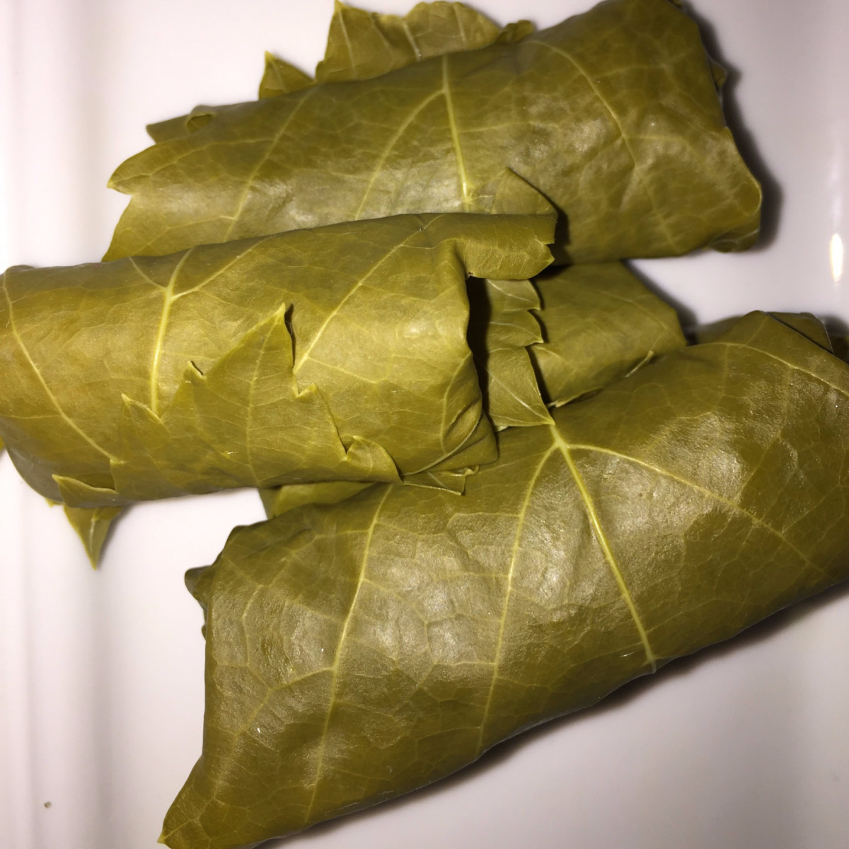 The rolled dolmades prior to cooking. Opa!