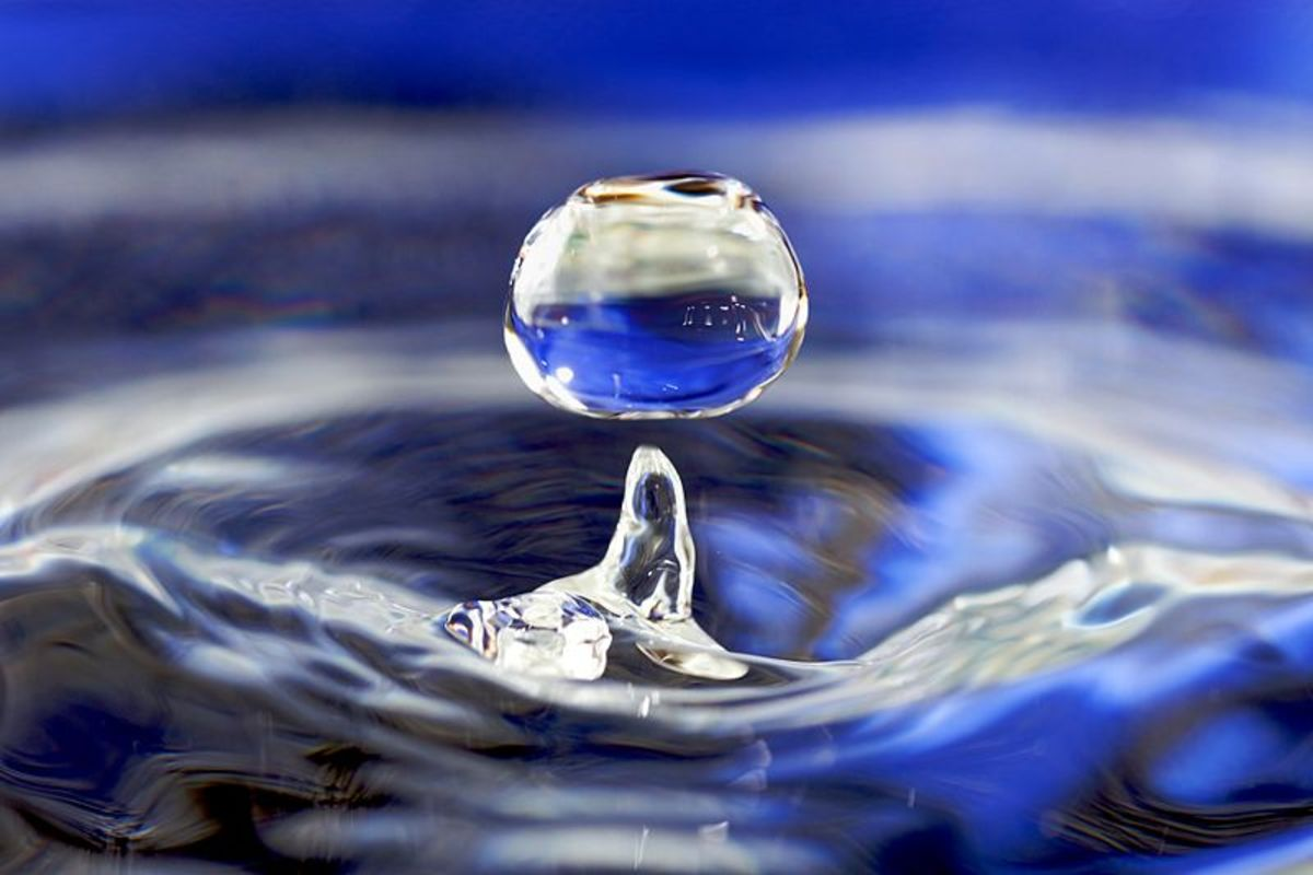 A droplet of water.