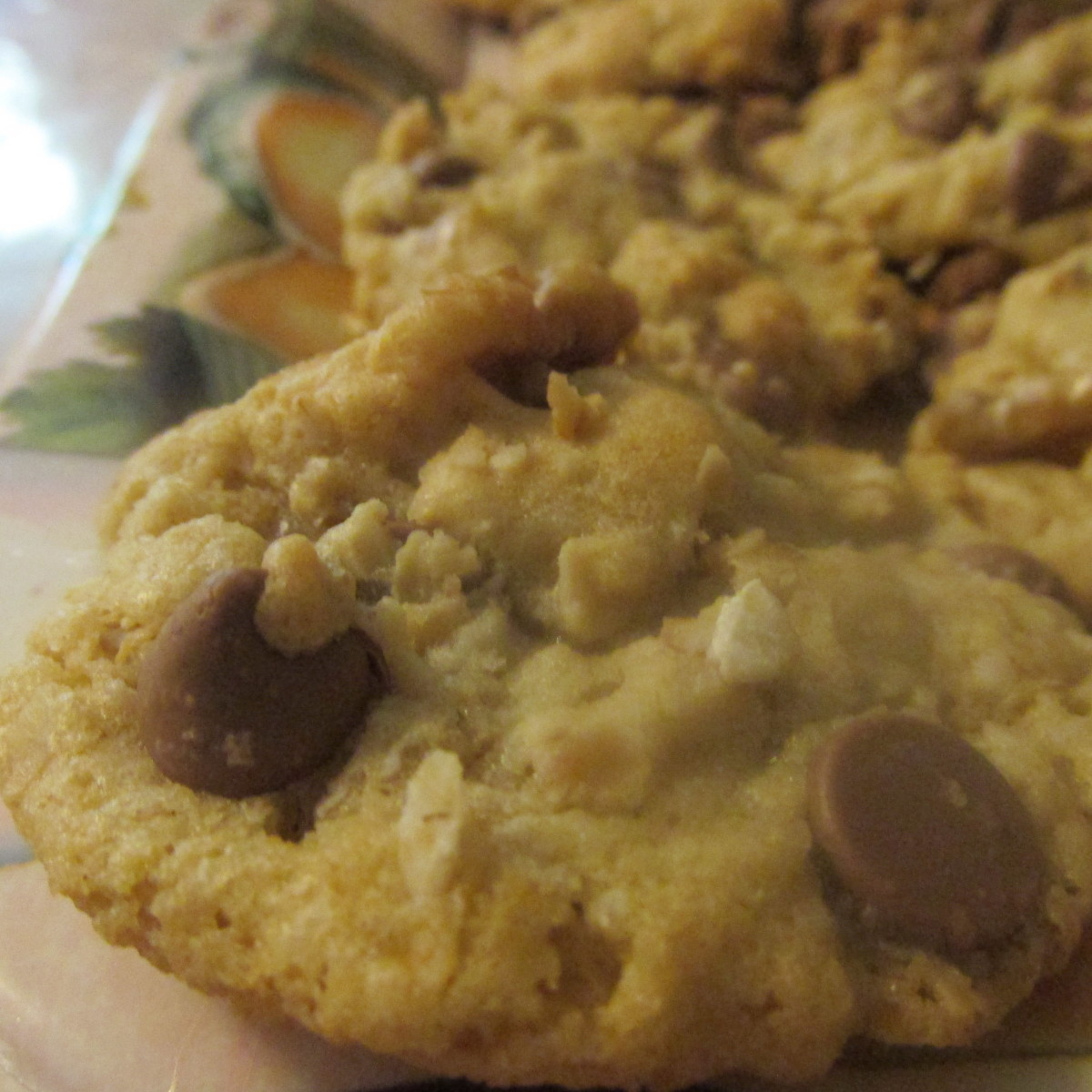 Chocolate chip oatmeal cookie with walnuts, fresh out of the oven