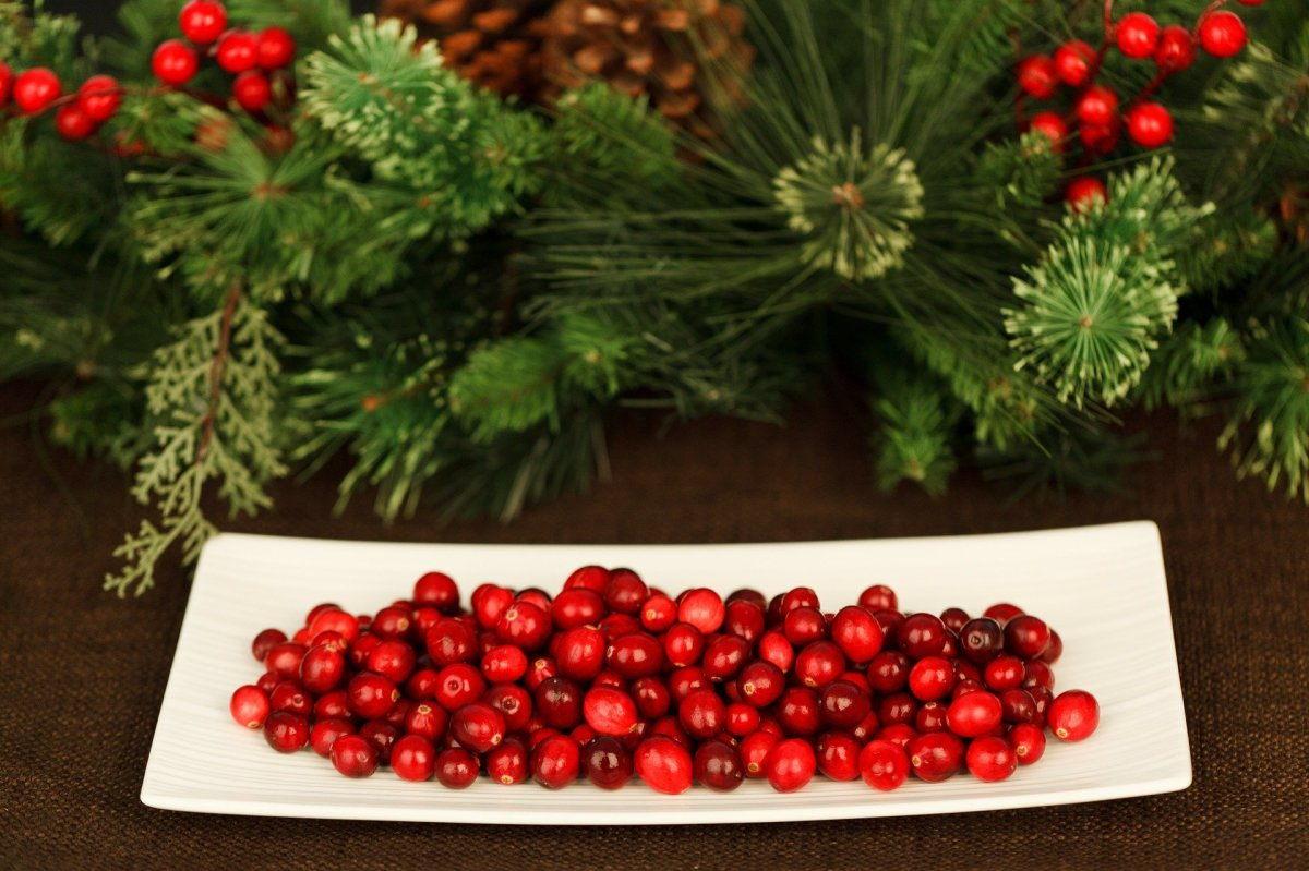 Ode to Cranberries and Walnuts: Holiday Treats With a Chinese Medicine Twist
