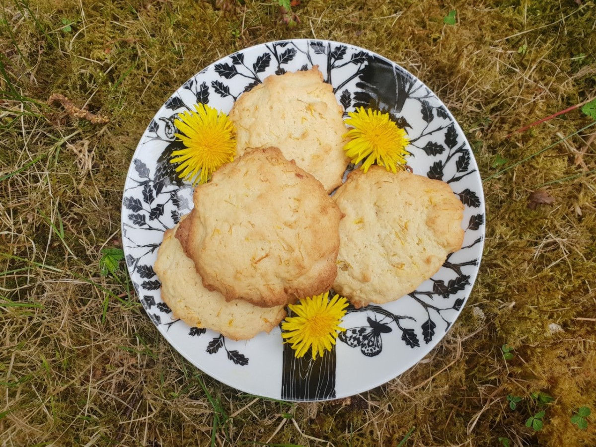 How to Make Dandelion Biscuits (UK Recipe)