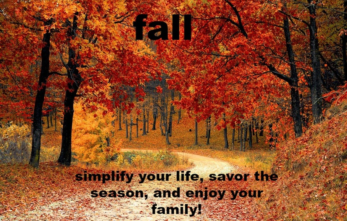 Let expectations go and see the true beauty of the season!