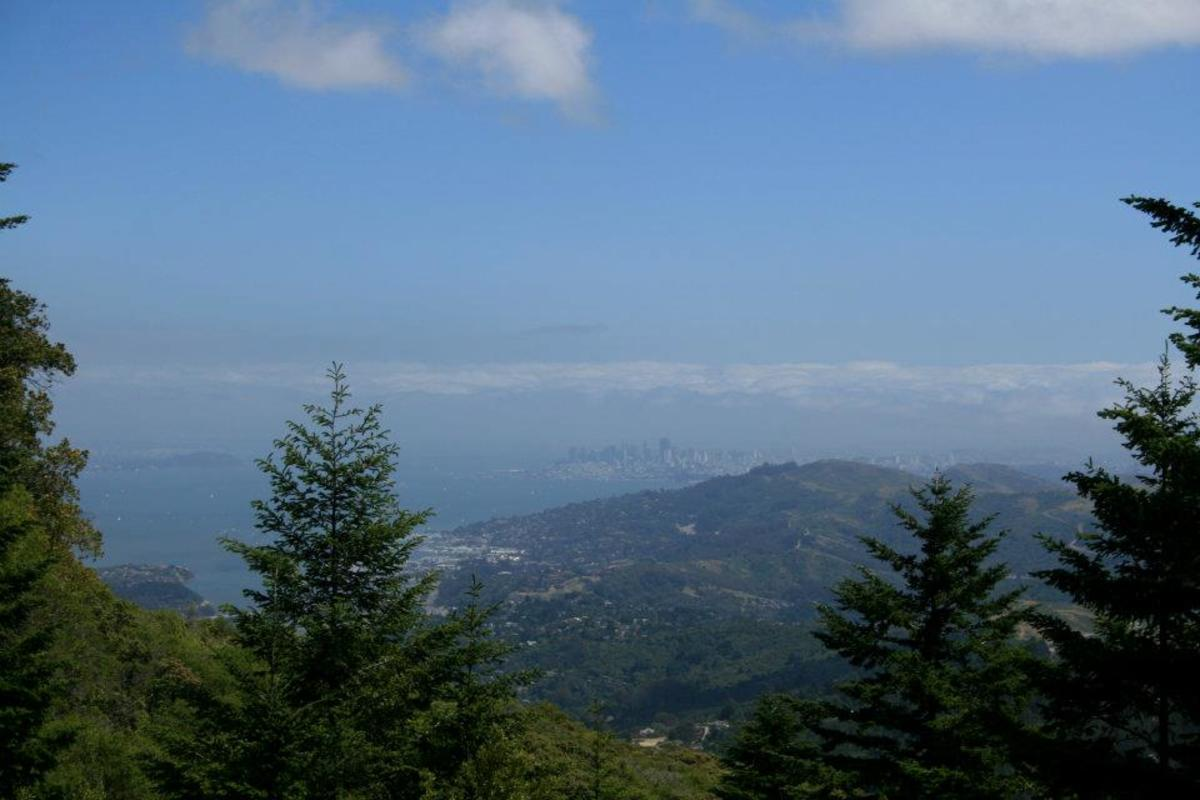 Several of the trails on Mt. Tamalpais offer stunning views of the land below, including the city of San Francisco.