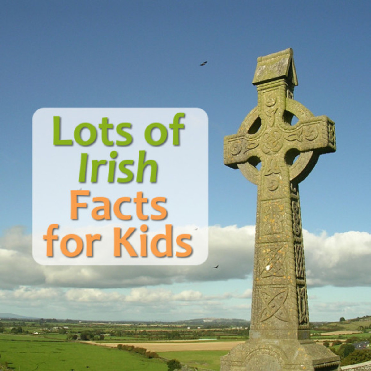 Fun Irish Facts and Information for Kids