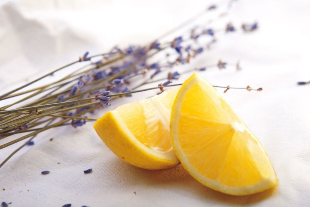 15-must-try-essential-oil-recipes-for-your-new-diffuser
