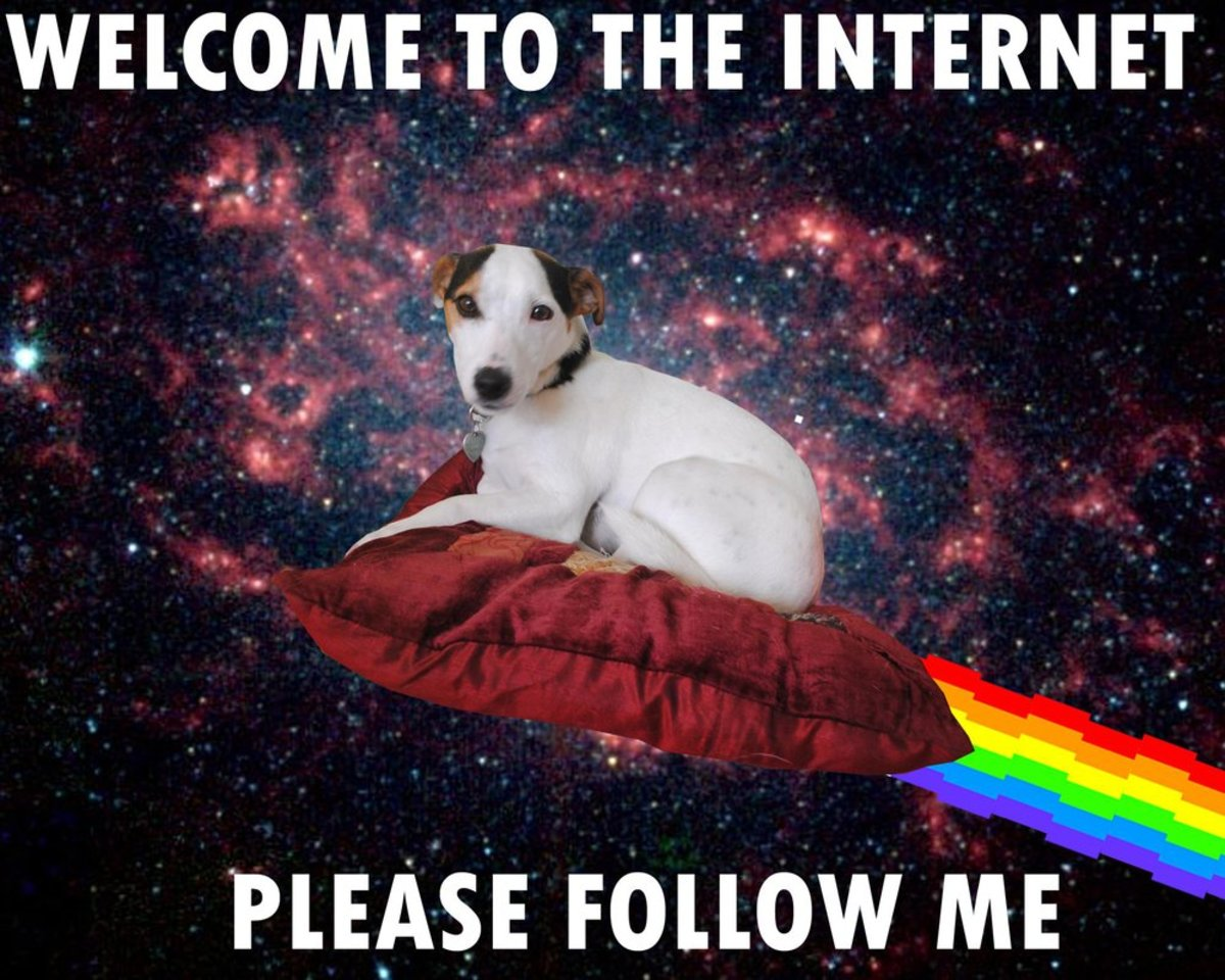 The Things I Hate About the Internet and What I Feel We Can Do to Fix It