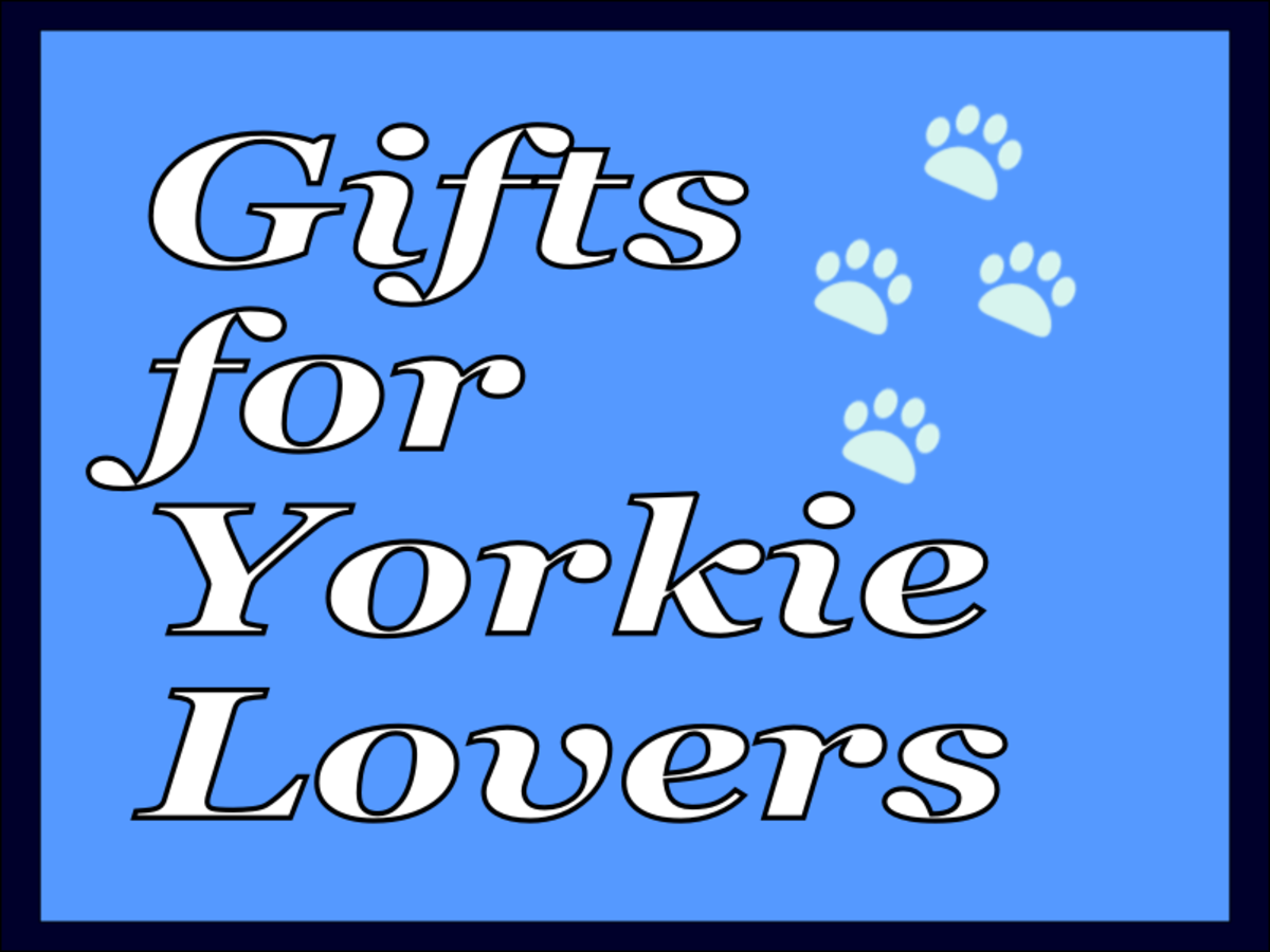 Fun gifts for the Yorkie lover in your life!