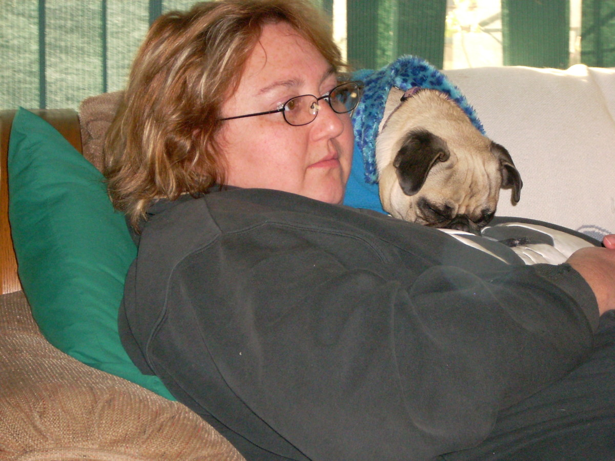 At the pinnacle of my weight problem I was 274 lbs. I think my pug, Rainbow, thought I was a fluffy pillow.