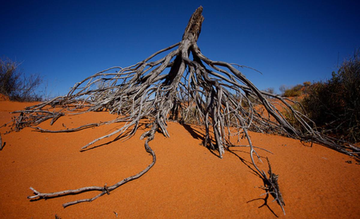 Australia's Simpson Desert.