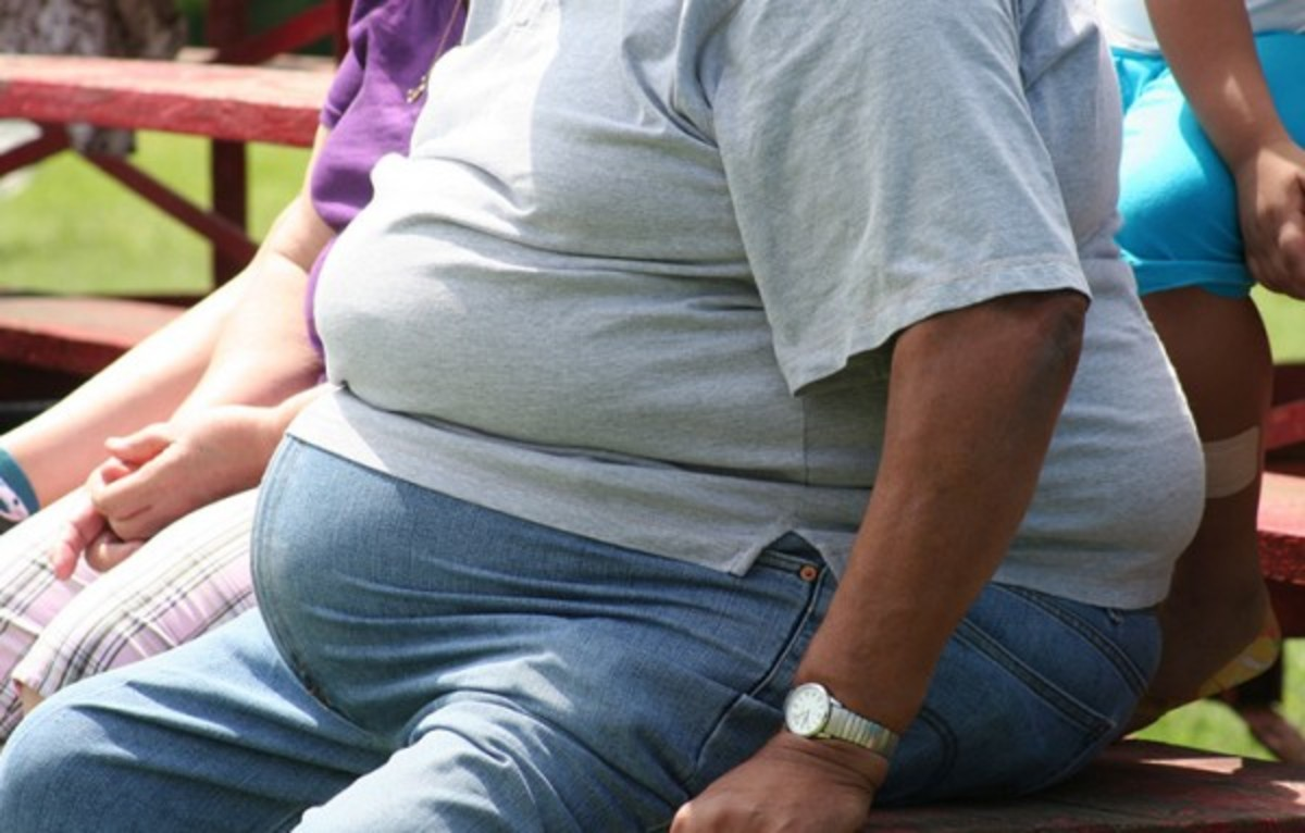 Role of the FTO Gene in Obesity