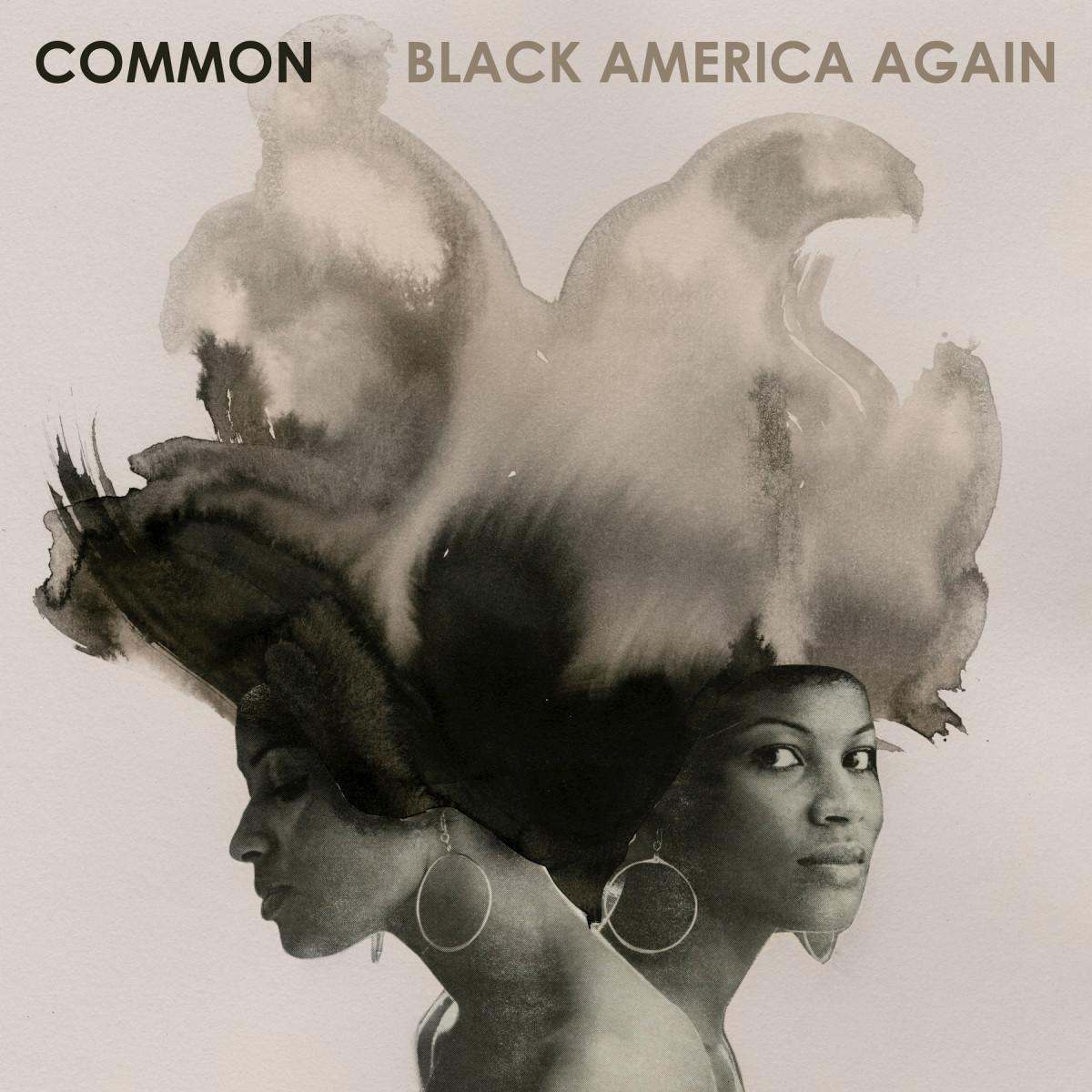 review-common-black-america-again