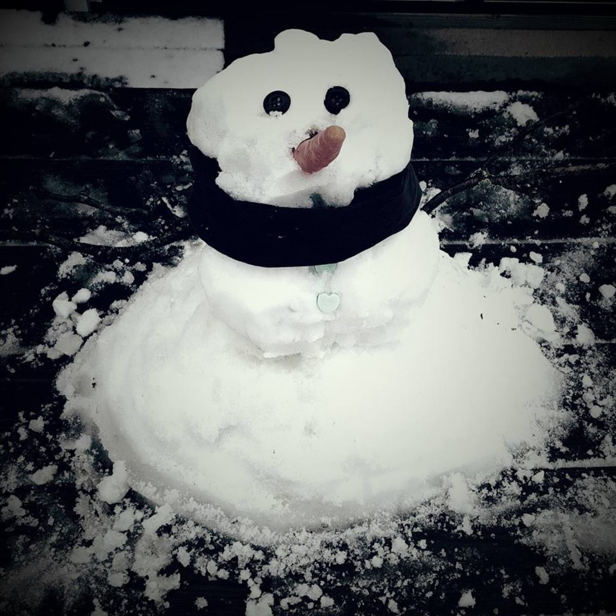 A little snowman my son and I made last winter.